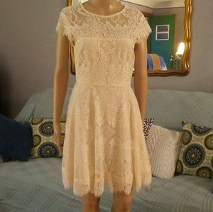 BB Dakota Lined Lace Dress